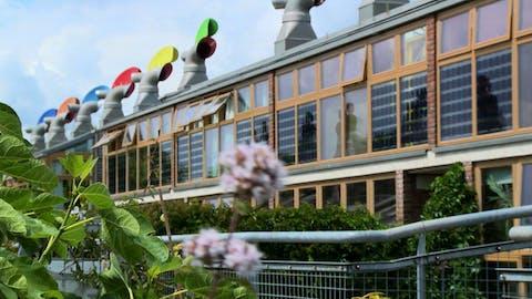 Great Interior Design Challenge Season 2 Inside Outside House Garden